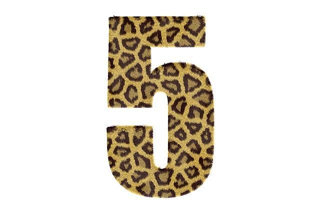 significado-numero-cinco